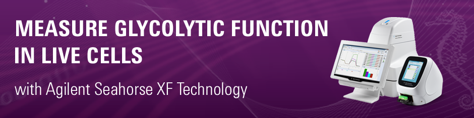 Measure Glycolytic Function in Live Cells with Seahorse XF Technology